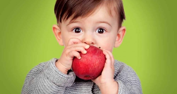 How eating apples and other fruit provides us with the right nutrients to lose help lose weight
